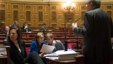 Marylise Lebranchu le 22 janvier au Sénat.©Jp