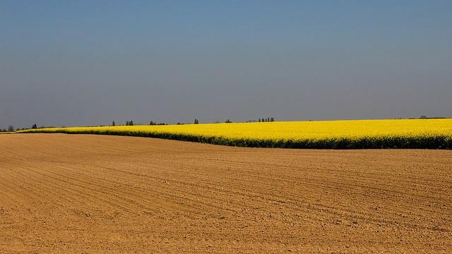 Paysage agricole essonnien