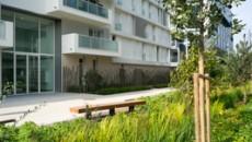 EcoQuartier des Bords de Seine à Issy-les-Moulineaux, aménagements paysager rue Eugène Atjet (photo : Fabrice Boissière) - Paysagiste : Paysage Urbain (Dominique Decourt)