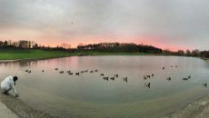 Parc de la Courneuve ©Panorama